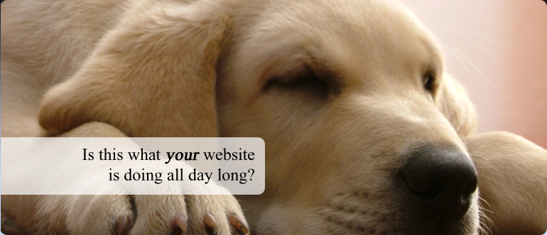 Picture of a sleeping yellow labrador puppy, caption: Is this what your website is doing all day?